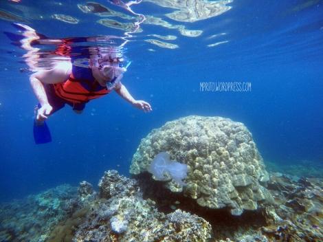 Underwater pahawang